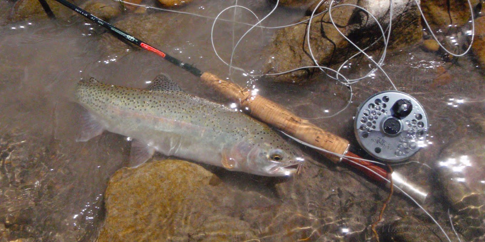 Mike 39 S Gone Fishin 39 Again The Upper Ruby