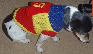 How to Knit a Super Dog Sweater