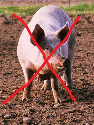 Image Result For Islam Pork Prohibition
