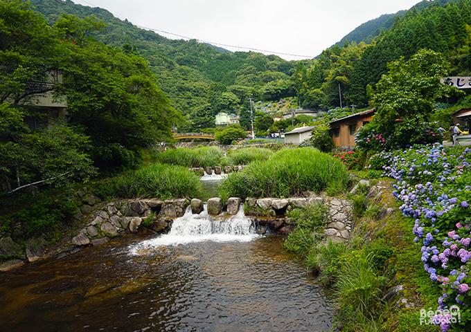 Mikaeri Falls' hydrangea festival // 見帰りの滝のあじさいまつり