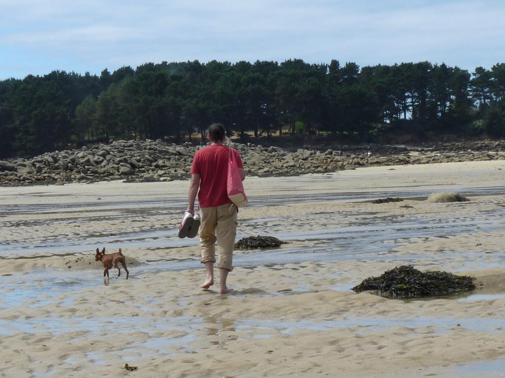 ランドルレック・海を歩く 引き潮 ブルターニュ