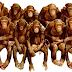 Mε δημοσκοπήσεις φανερά μαιμουδένιες ο Μπόμπολας και ο Θέμος στηρίζουν την κυβέρνηση!