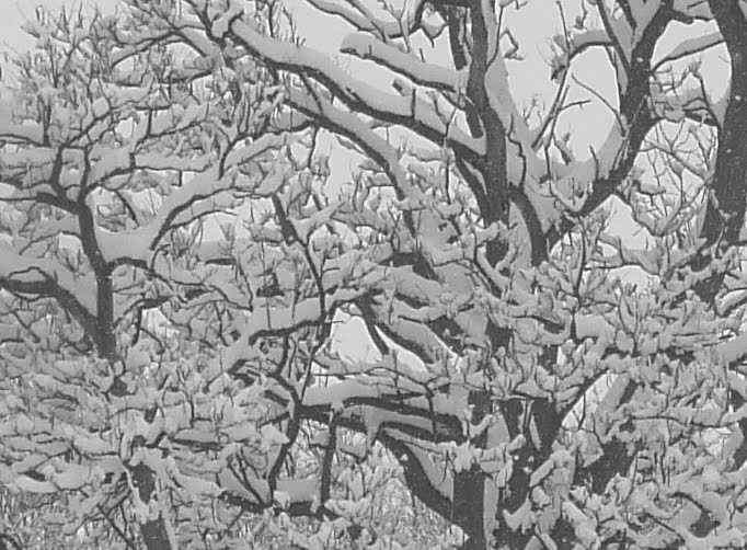 Balanced snow