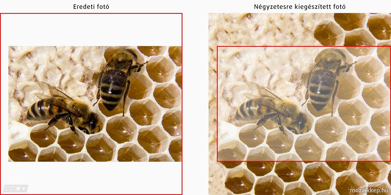 Hajdú Ervin Ottó - Méhecskés mozaik alap képének elkészítése