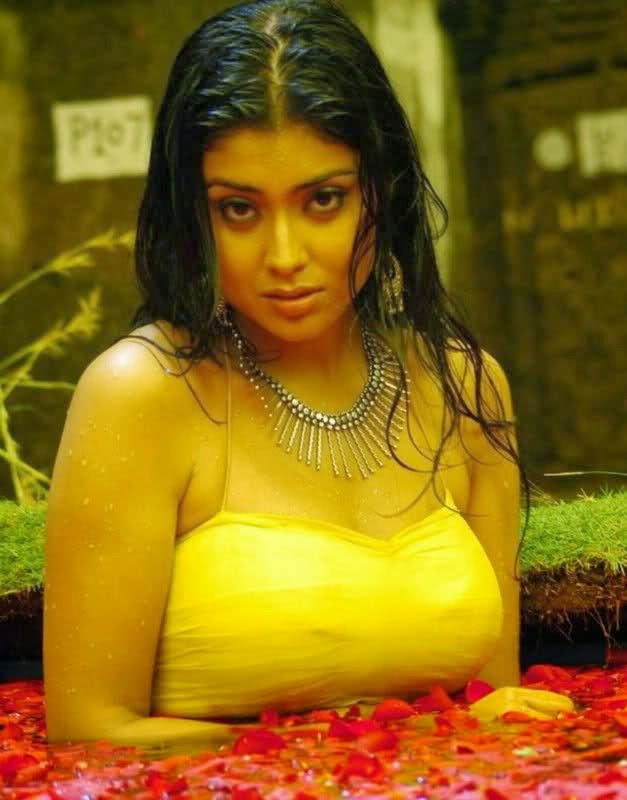 shriya saran hot photo gallery