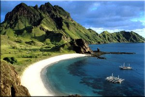 komodo island is the new 7 wonders of the world, seo contest, komodo.me