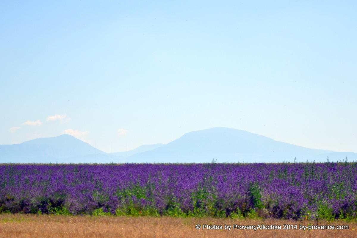 montagnes,provence
