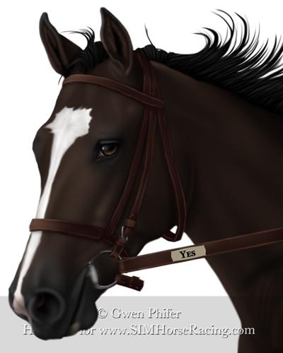 Dark Bay Horse With Blaze Dark Bay Horse With Bl...