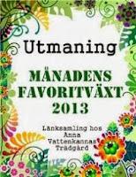 http://annavattenkannastradgard.blogspot.se/2013/11/manadens-favoritvaxt-i-november.html