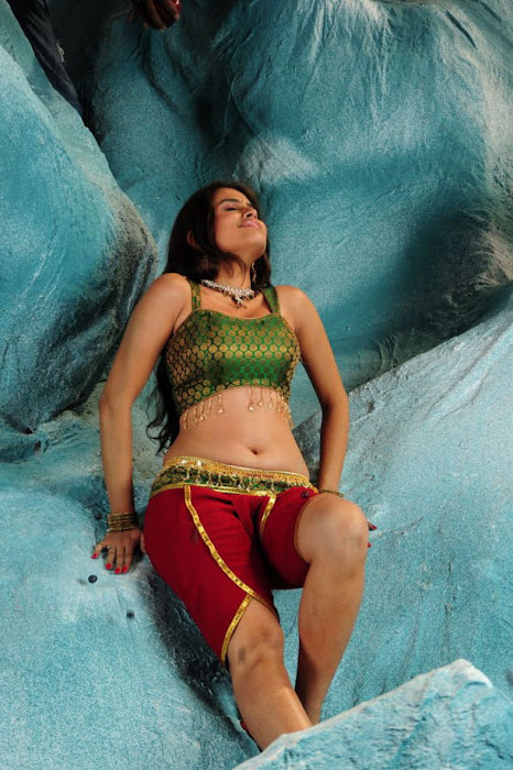 sheena new from nandeeswarudu, sheena spicy cute stills