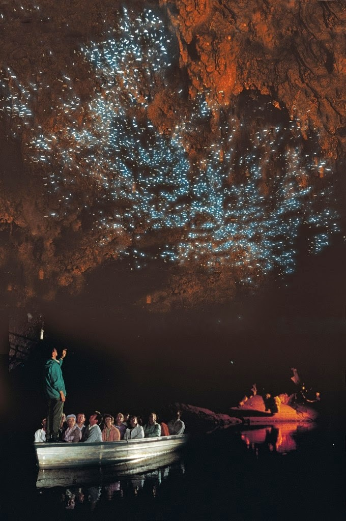 glow worms photography new zealand cave