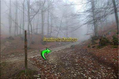 Enlazamos con el Camino de Santiago