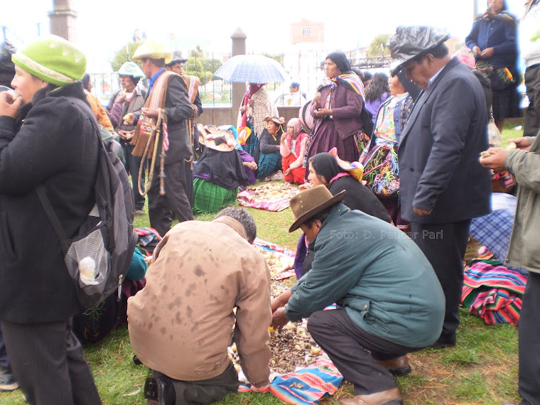 COMPARTIR UN VALOR IMPORTANTE EN CAPACHICA