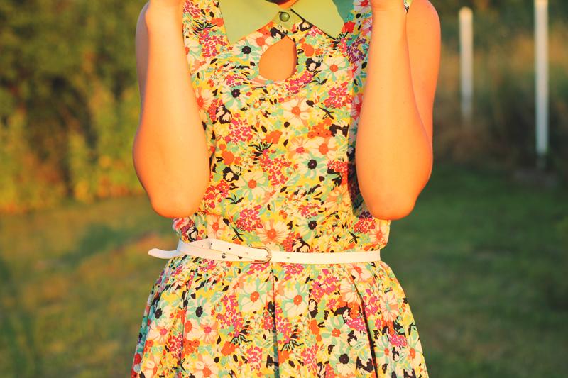 sukienka z kolnierzem