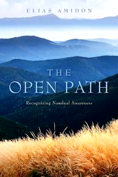 Book Review: The Open Path: Recognizing Nondual Awareness by Elias Amidon