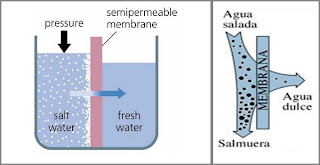 Destilacion por membrana