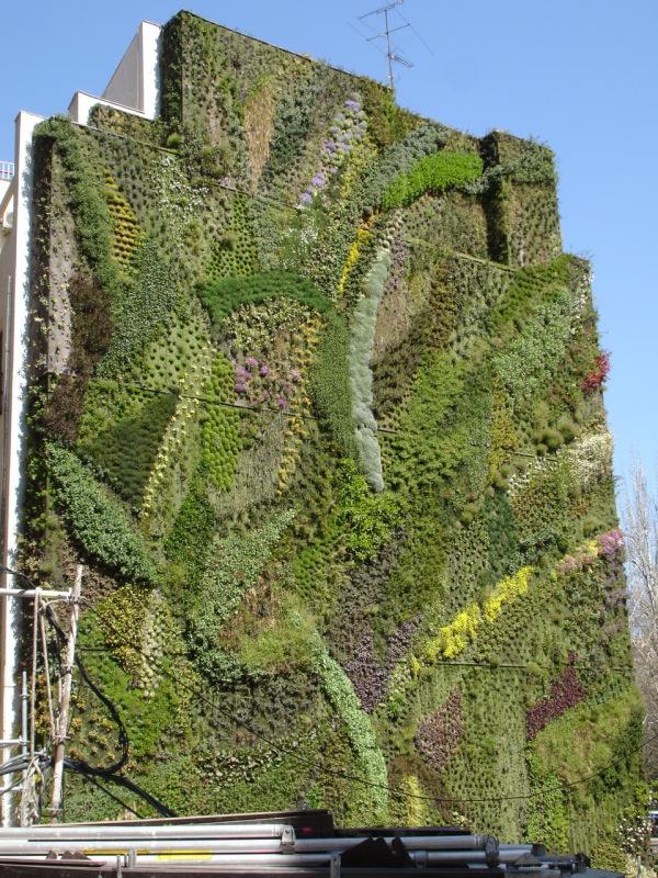 Mimic estudio arquitectura vegetal muros verdes for Muros verdes arquitectura