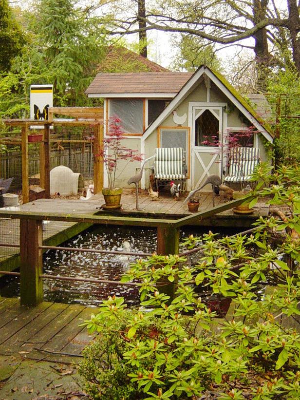 Backyard Chickens Coop : backyard, chicken, coop, backyard chickens, chicken coop