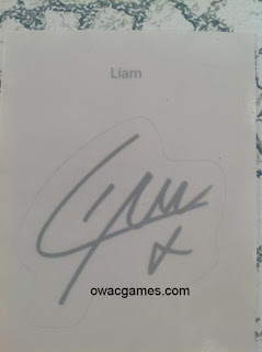 one-direction-fan-pack-liam-autografo-cromo-sticker