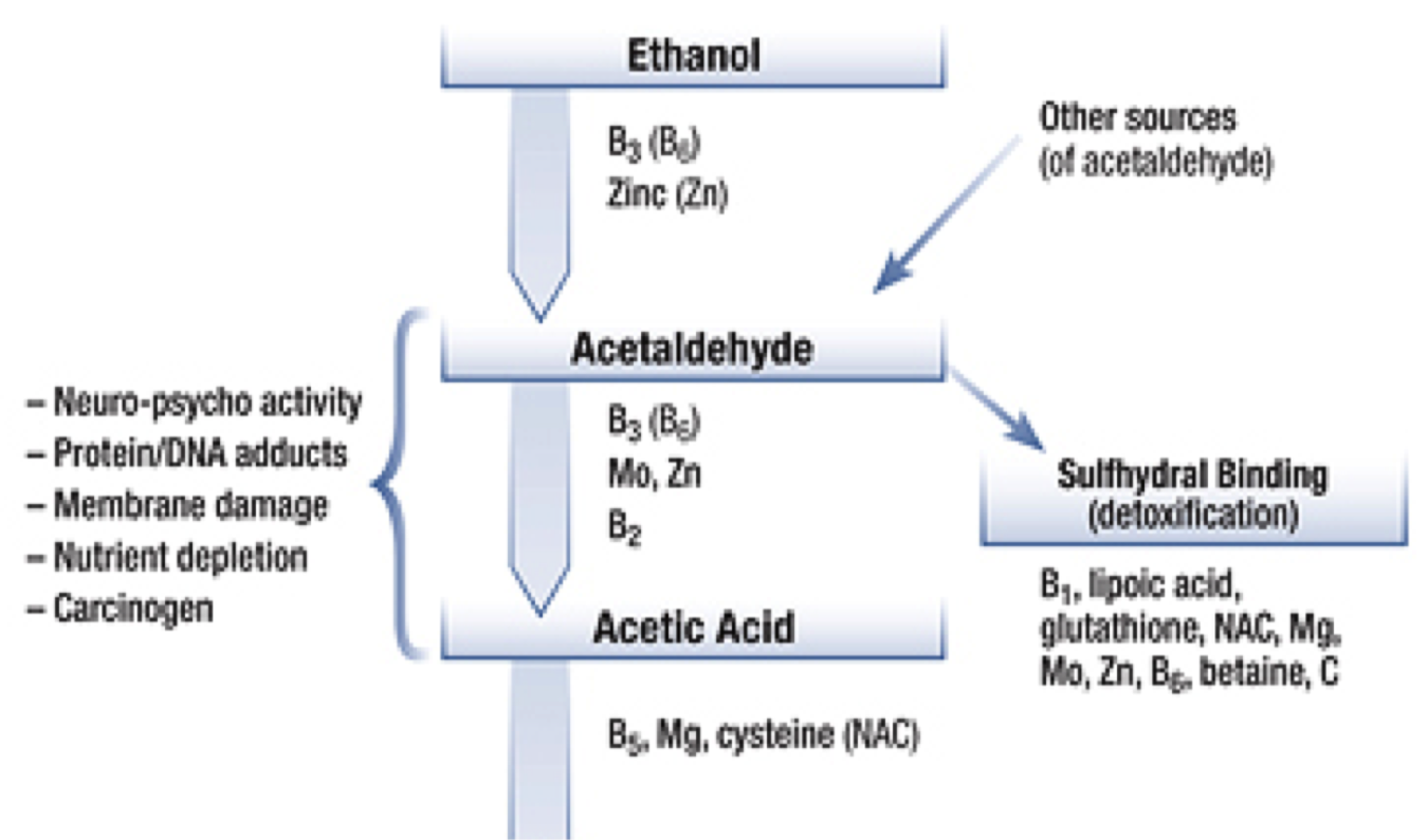 alcohol and acetaldehyde How to minimize cancer causing acetaldehyde exposure from alcoholic beverages acetaldehyde is a possible cancer-causing (carcinogenic) compound that occurs naturally in alcoholic beverages and many foods such as bananas and yogurt it may.