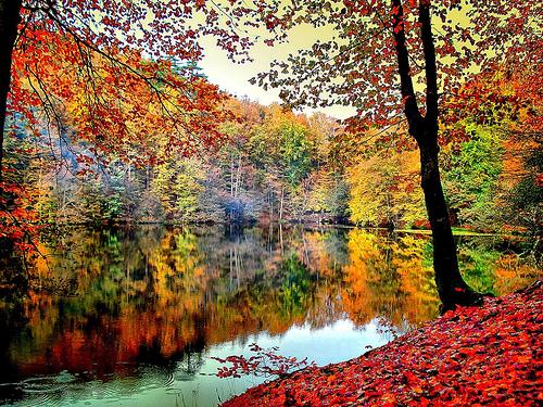 Sülük gölü