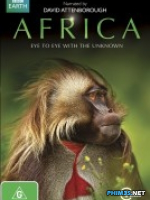 Thiên Nhiên Hoang Dã Africa
