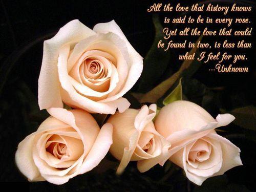 best love quotes best love quotes best love quotes best love quotes ...