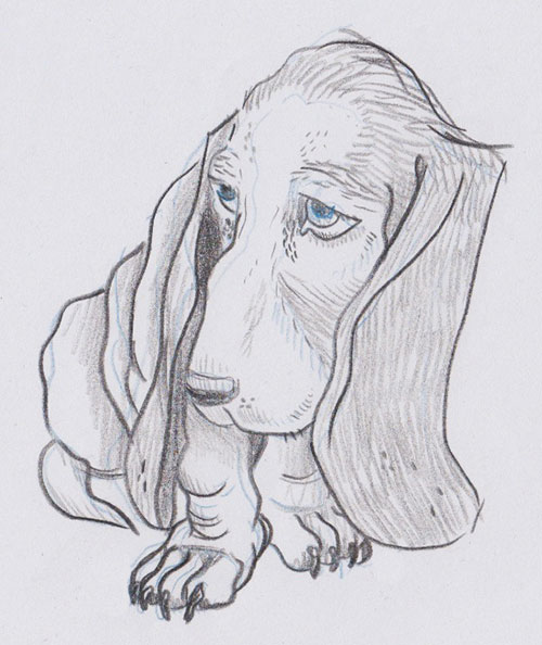Animalsleepstories droopy hound dog drawing