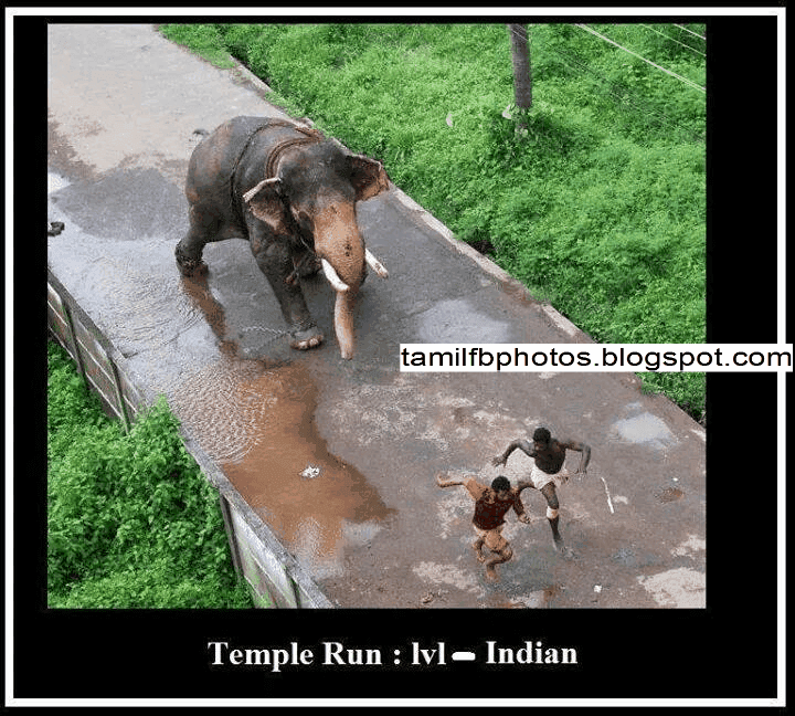 Real Temple Run Funny Photo