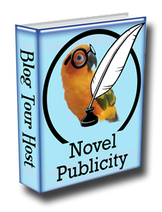 http://www.novelpublicity.com/