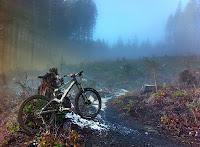 Wedekind Trail