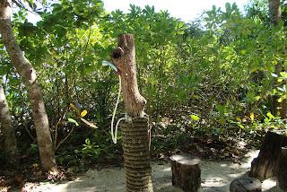 Similan Island shower