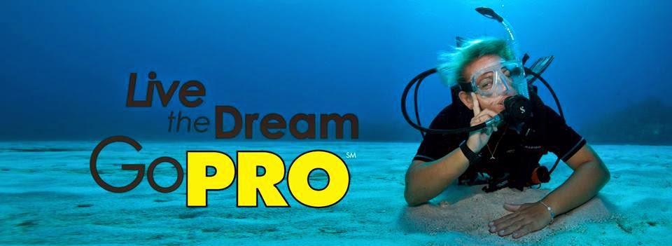 Go PADI Pro