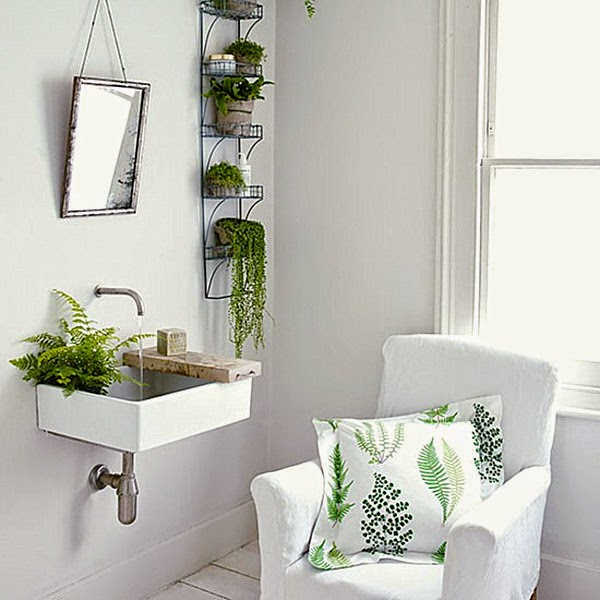 Conseils d co et relooking id es d coration fra che avez vous des plantes da - Plantes de salle de bain ...
