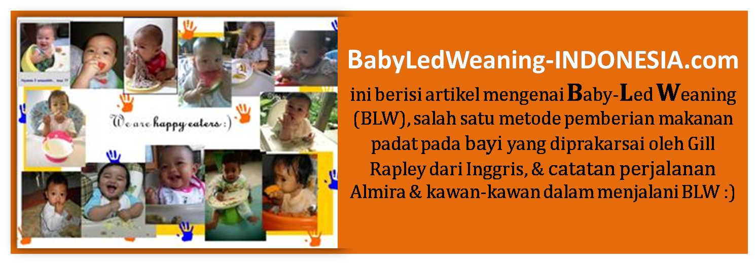 Baby-led Weaning (BLW) Indonesia