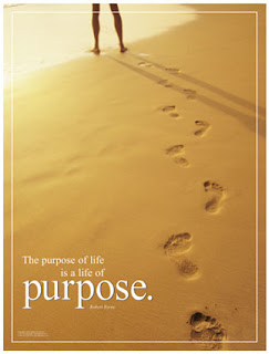 Having Purpose