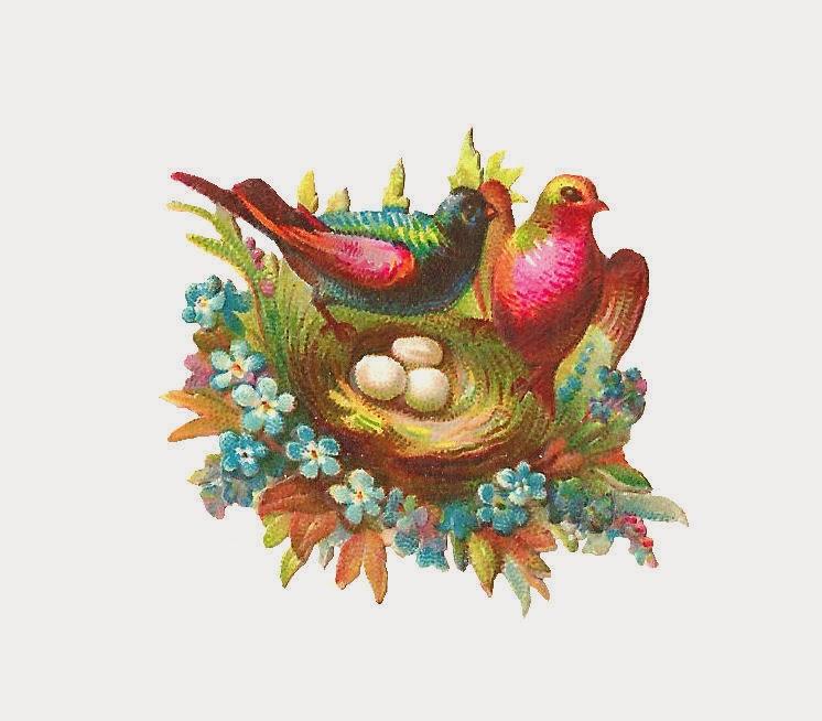 http://2.bp.blogspot.com/-3Q53IN1WiRo/UyhtKl5MVlI/AAAAAAAATWo/ZKR3juiH51A/s1600/bird_nest_04.jpg