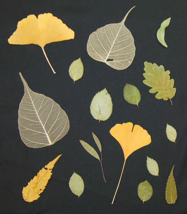 textile ideen bl tter auf stoff positiv und negativ mustermittwoch bei m llerin art. Black Bedroom Furniture Sets. Home Design Ideas