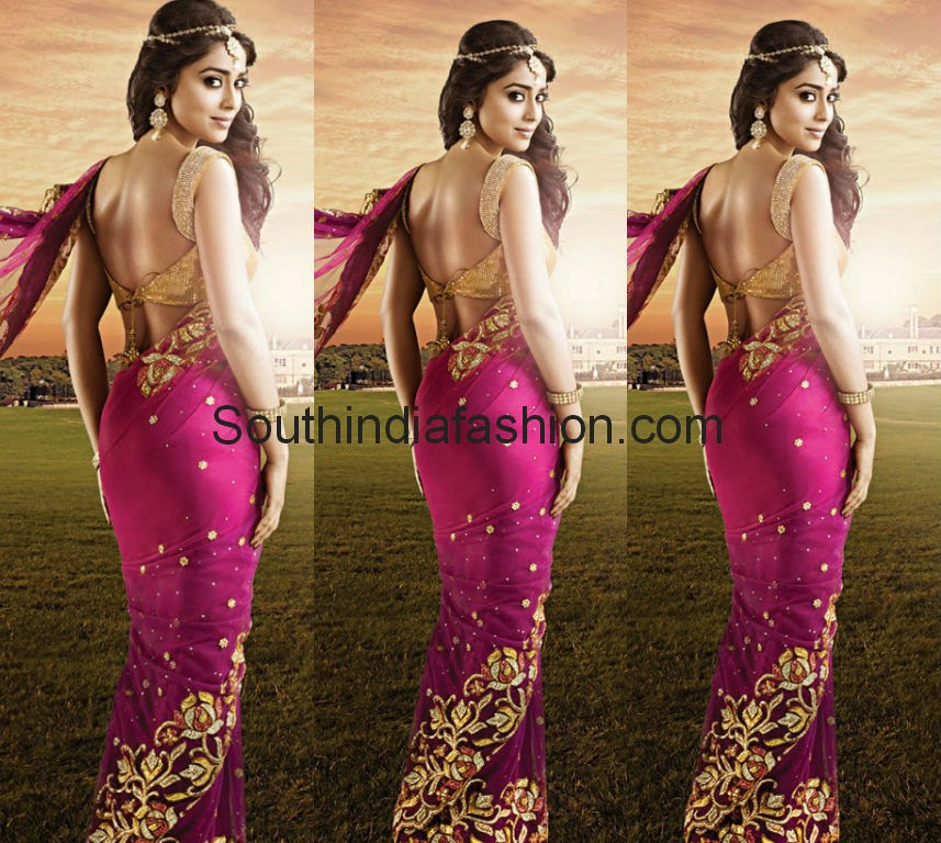 shriya sarn saree blouse designs