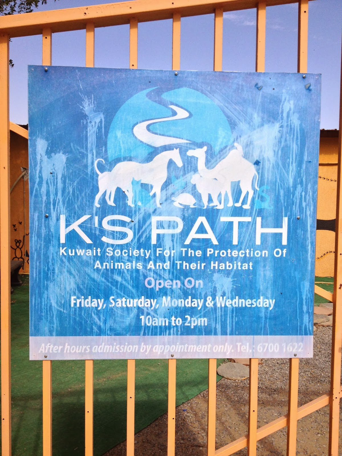 The Kuwait Society For The Protection Of Animals And Their Habitat (aka K's  Path) Houses Its Animals There