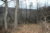 68 Acres, 100th Street, Spragueville $272,160 PENDING