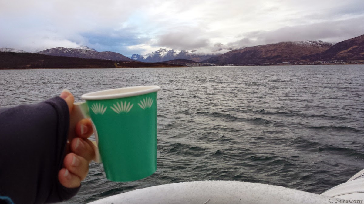 Tromso tastebud travelling (aka Norway rocks) - Adventures of a London Kiwi