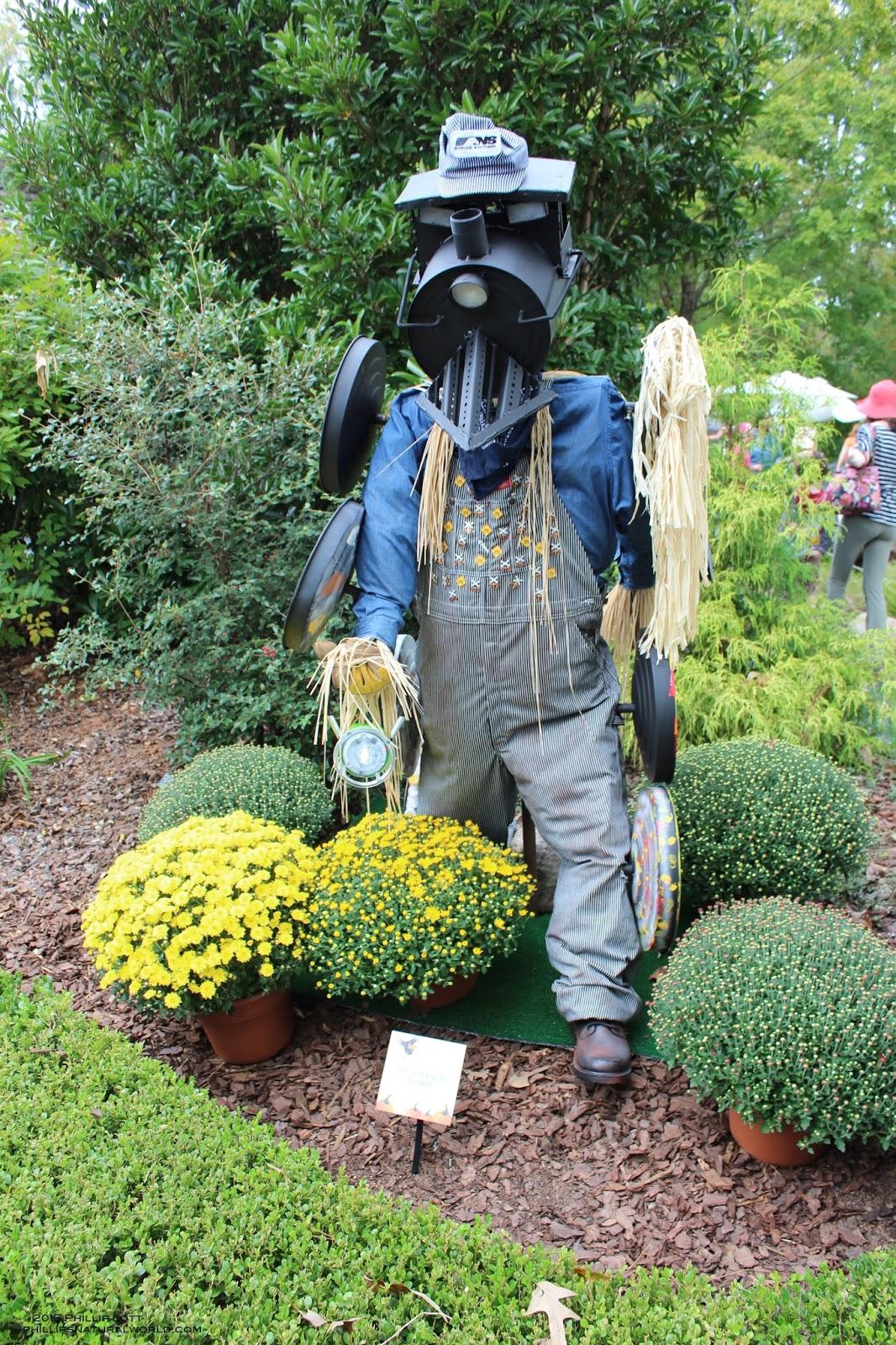 Halloween Scarecrows | Phillip\'s Natural World
