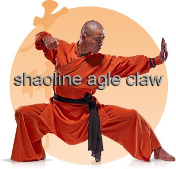 Shaolineagleclaw