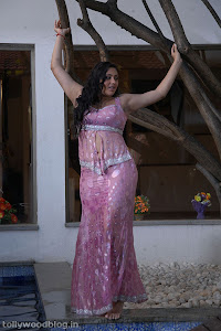 namitha saree hot