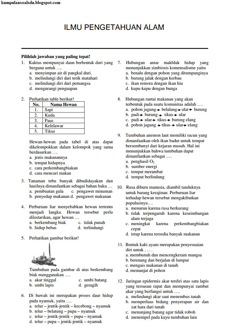 Soal dan Kunci Jawaban UN IPA US 6 SD UAS 2 TA 2013-2014
