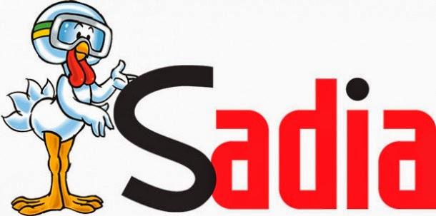 Artigo que analisa a atual estratégia mercadológica da Sadia em apoio a eventos esportivos.
