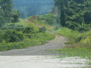 Road in Rural Sarawak