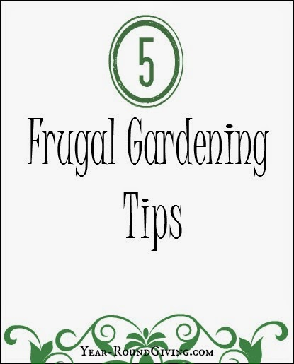5 frugal gardening tips