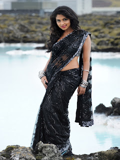 Amala Paul Spicy Saree Hot Pics